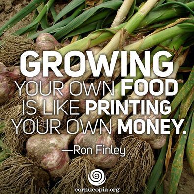 ron-finley-growing-food-printing-money